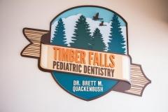 Timber_Falls_Pediatric_Dentistry_Logo